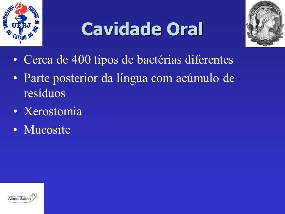 Cavidade Oral Cerca de 400 tipos de bactérias diferentes