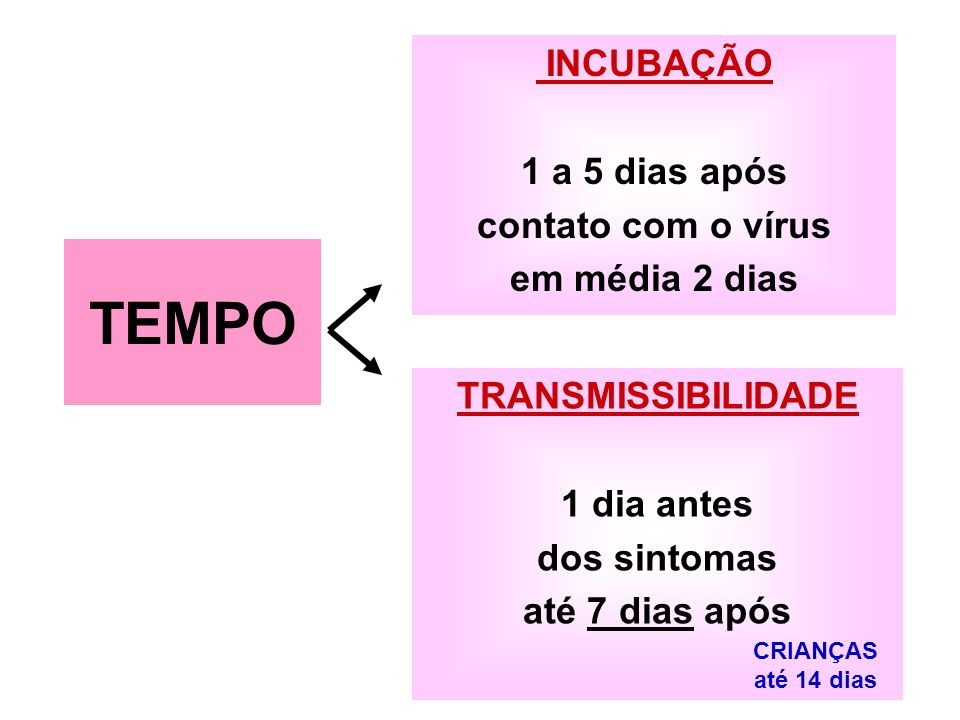 TEMPO INCUBAÇÃO 1 a 5 dias após contato com o vírus em média 2 dias
