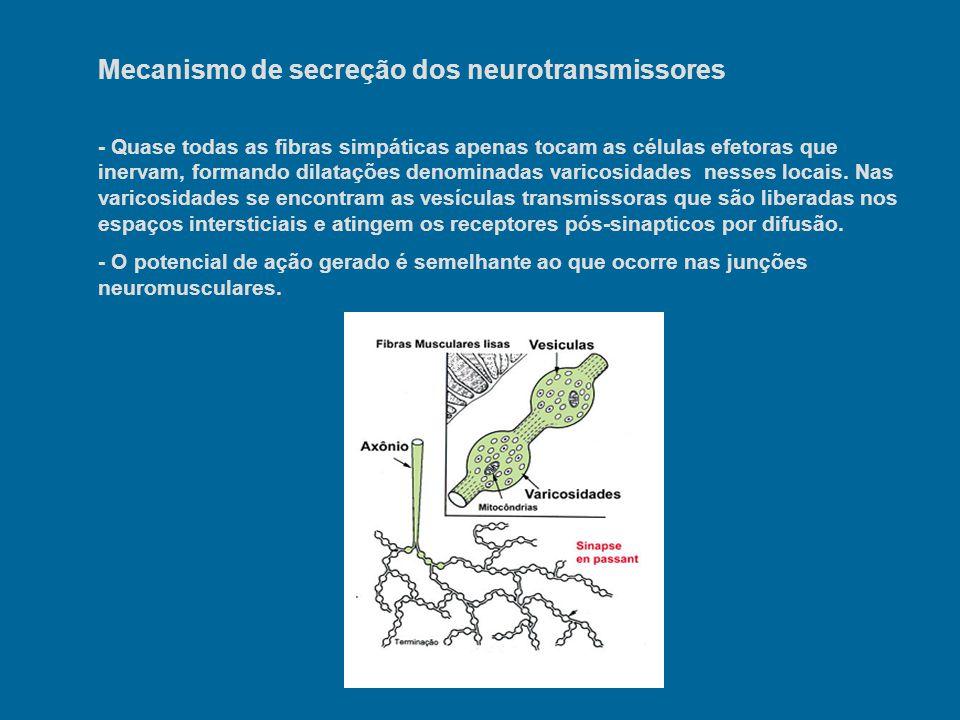 Mecanismo de secreção dos neurotransmissores