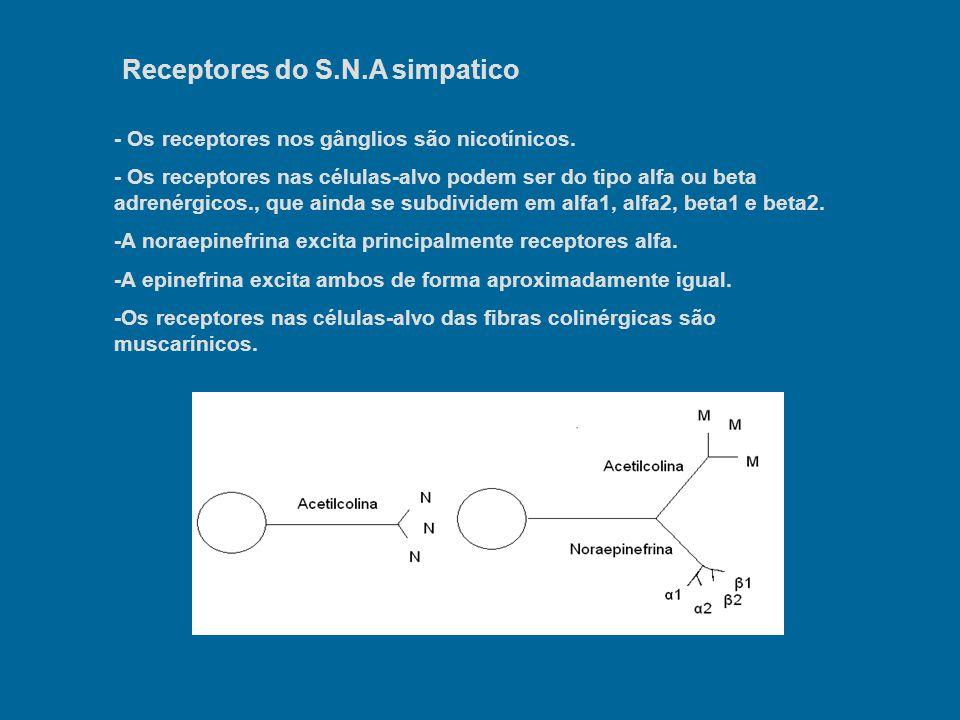 Receptores do S.N.A simpatico