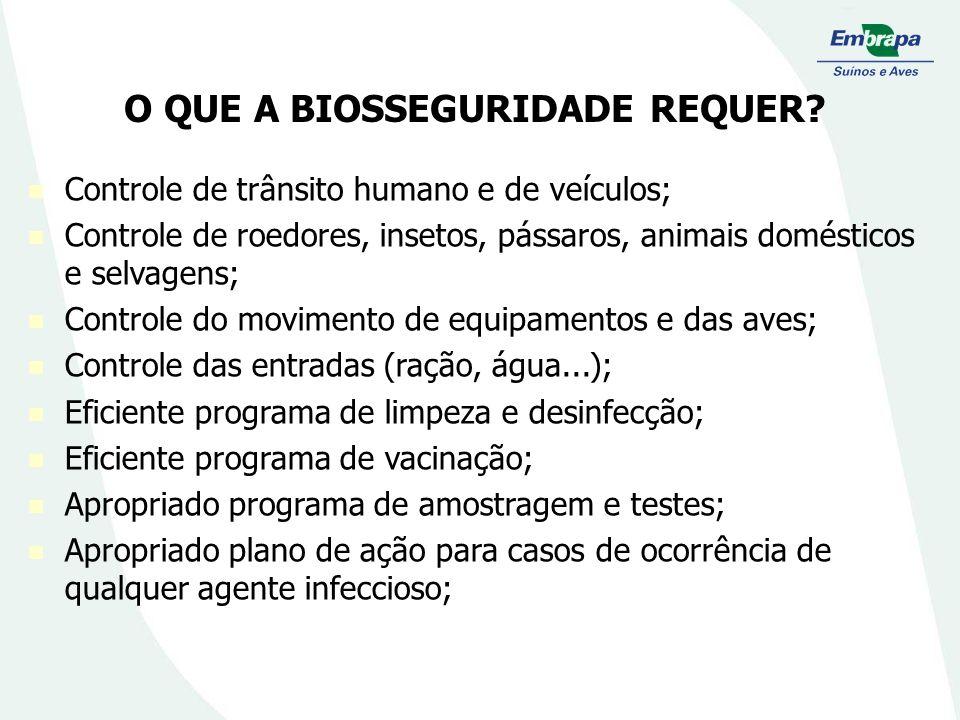 O QUE A BIOSSEGURIDADE REQUER