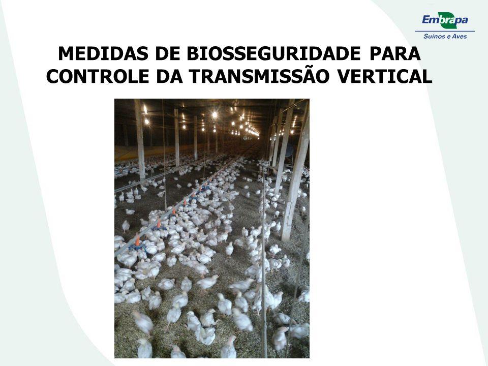 MEDIDAS DE BIOSSEGURIDADE PARA CONTROLE DA TRANSMISSÃO VERTICAL
