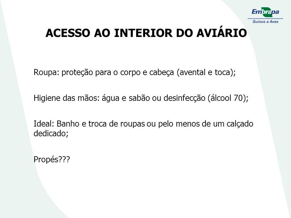 ACESSO AO INTERIOR DO AVIÁRIO