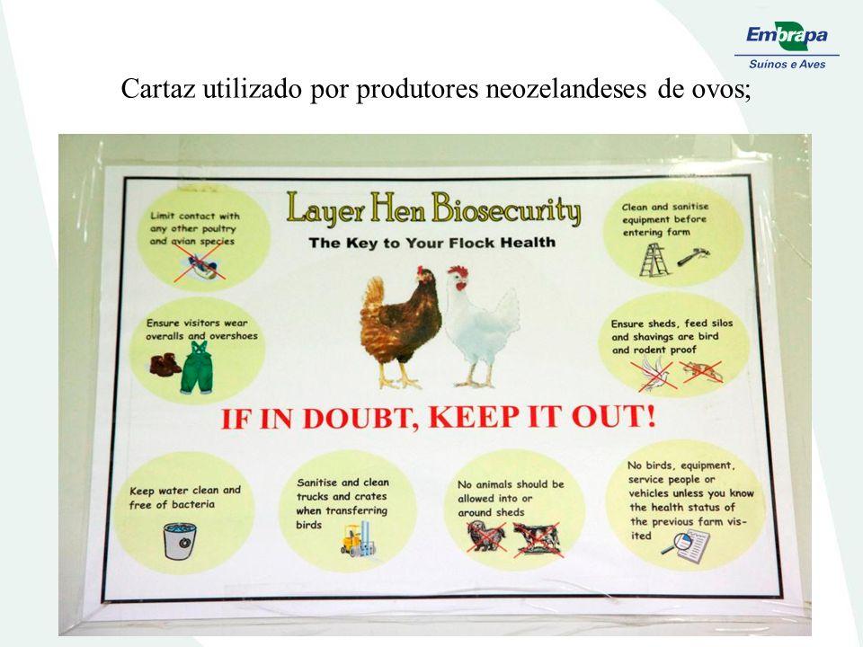 Cartaz utilizado por produtores neozelandeses de ovos;
