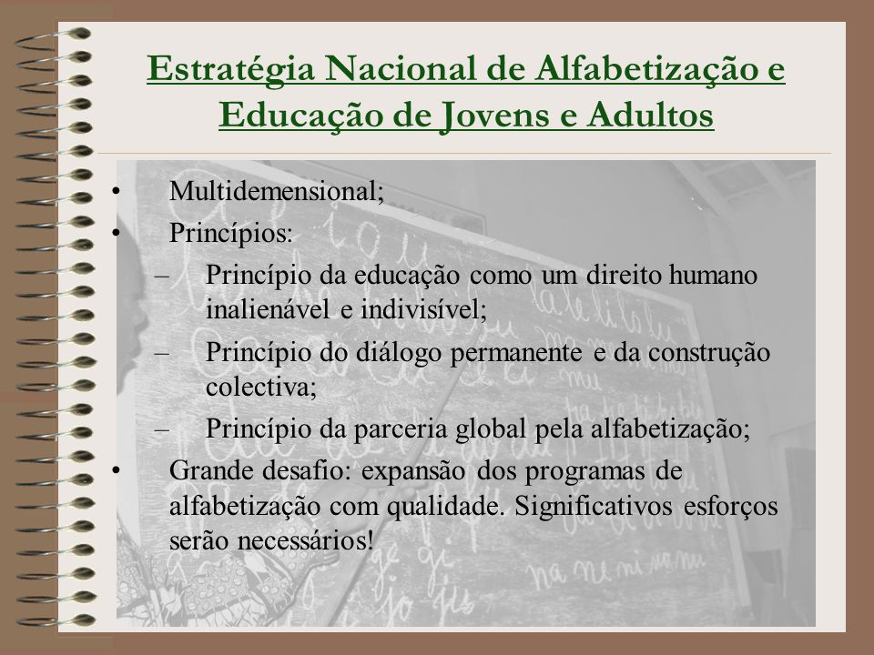 Estratégia Nacional de Alfabetização e Educação de Jovens e Adultos