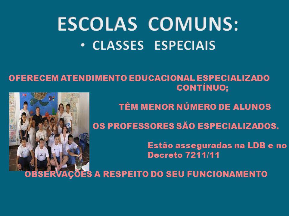 ESCOLAS COMUNS: CLASSES ESPECIAIS