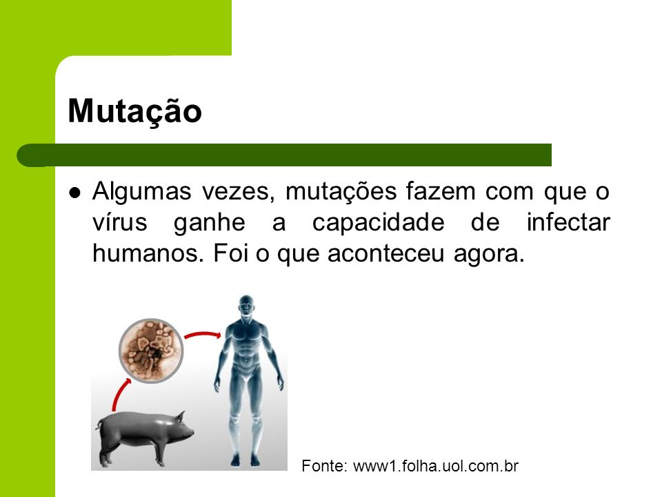 Mutação Algumas vezes, mutações fazem com que o vírus ganhe a capacidade de infectar humanos. Foi o que aconteceu agora.