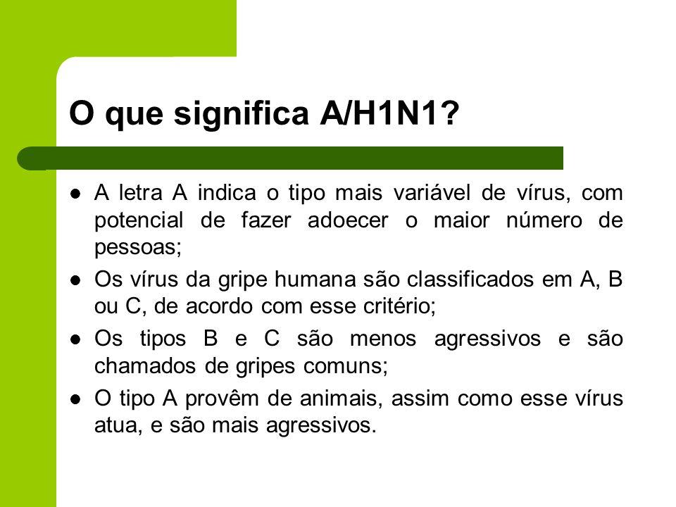 O que significa A/H1N1 A letra A indica o tipo mais variável de vírus, com potencial de fazer adoecer o maior número de pessoas;