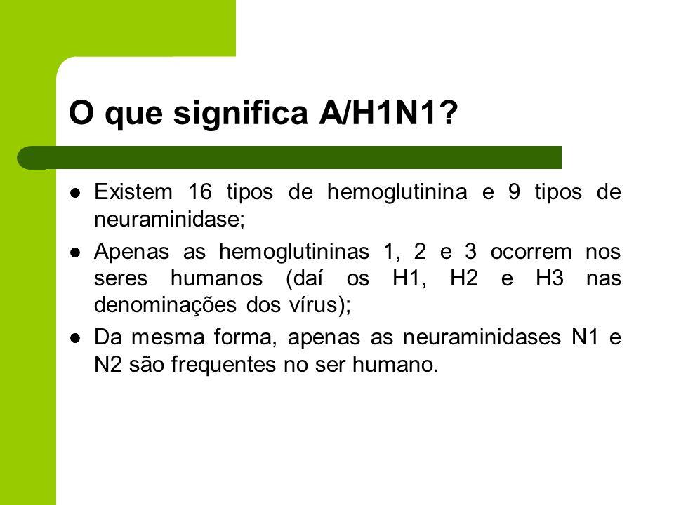 O que significa A/H1N1 Existem 16 tipos de hemoglutinina e 9 tipos de neuraminidase;