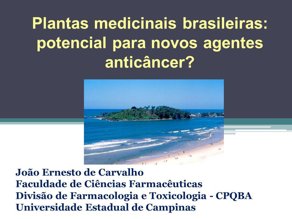 Plantas medicinais brasileiras: potencial para novos agentes anticâncer