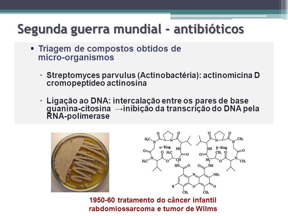 Segunda guerra mundial - antibióticos