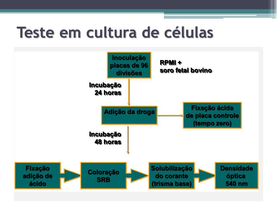 Teste em cultura de células