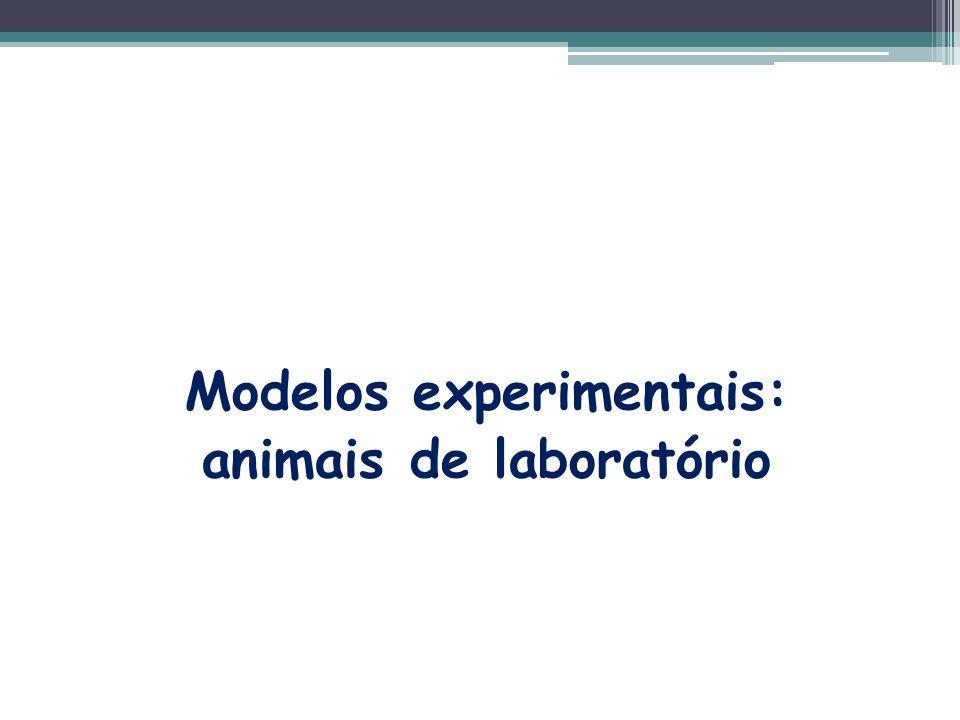 Modelos experimentais: animais de laboratório