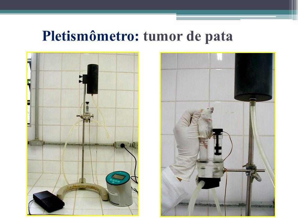 Pletismômetro: tumor de pata
