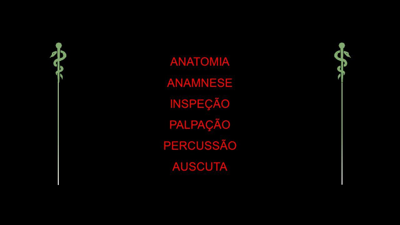 ANATOMIA ANAMNESE INSPEÇÃO PALPAÇÃO PERCUSSÃO AUSCUTA