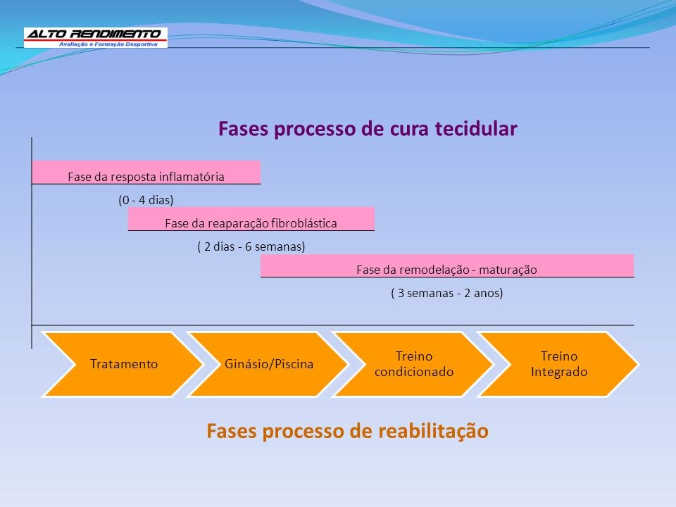 Fases processo de cura tecidular