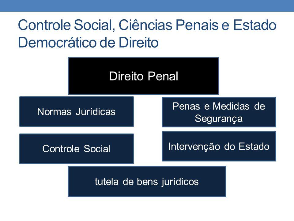 Controle Social, Ciências Penais e Estado Democrático de Direito