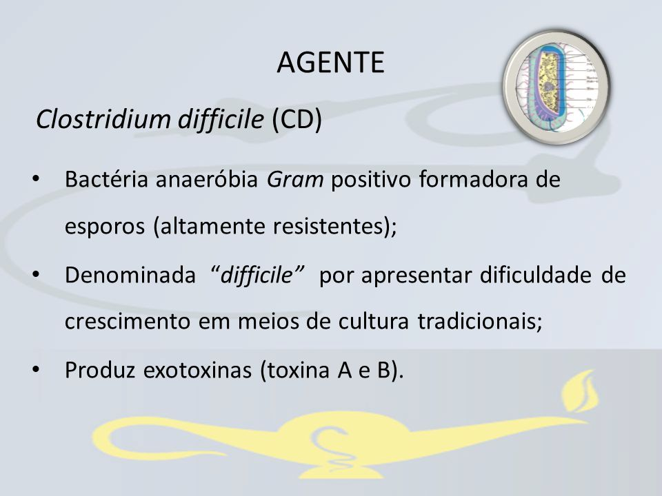 AGENTE Clostridium difficile (CD)
