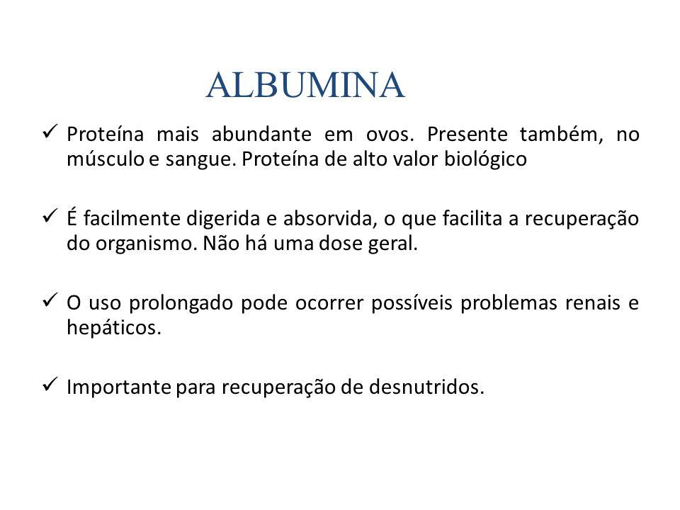 ALBUMINA Proteína mais abundante em ovos. Presente também, no músculo e sangue. Proteína de alto valor biológico.