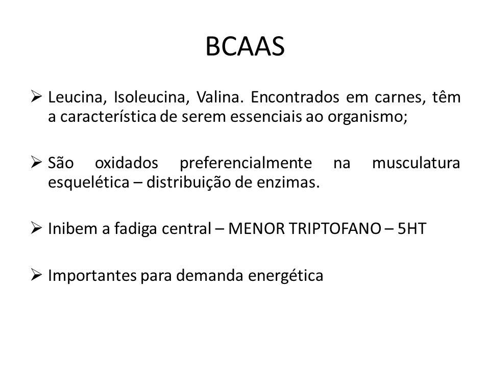 BCAAS Leucina, Isoleucina, Valina. Encontrados em carnes, têm a característica de serem essenciais ao organismo;