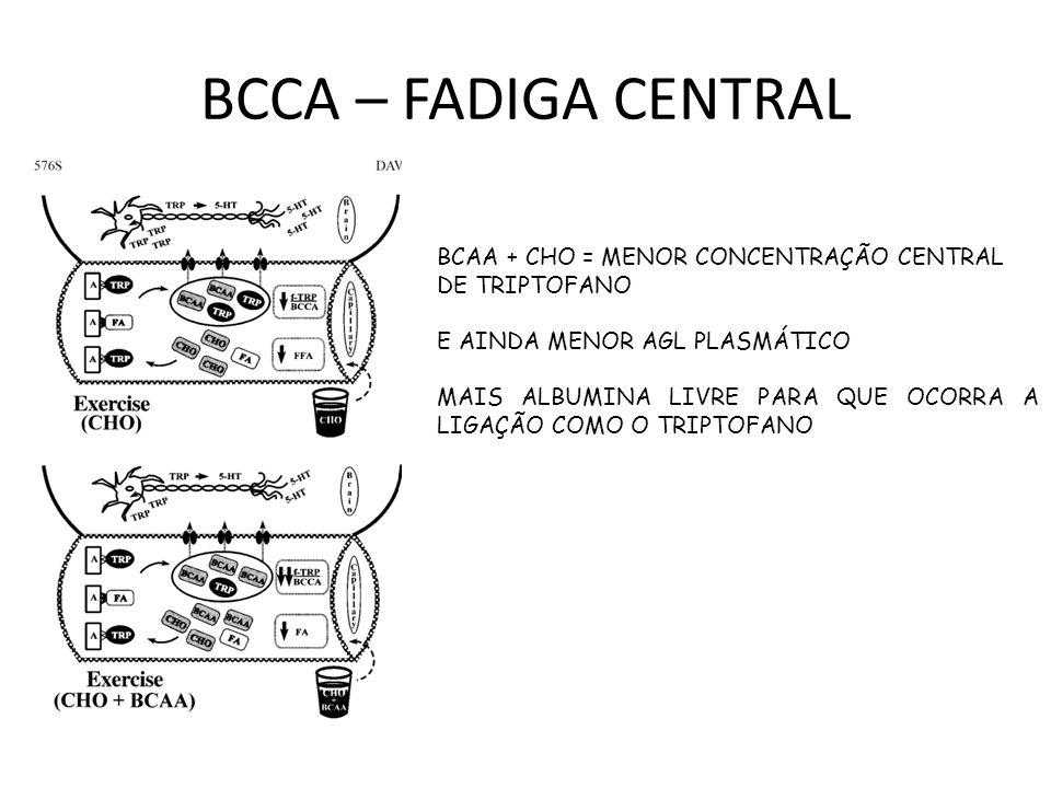BCCA – FADIGA CENTRAL BCAA + CHO = MENOR CONCENTRAÇÃO CENTRAL
