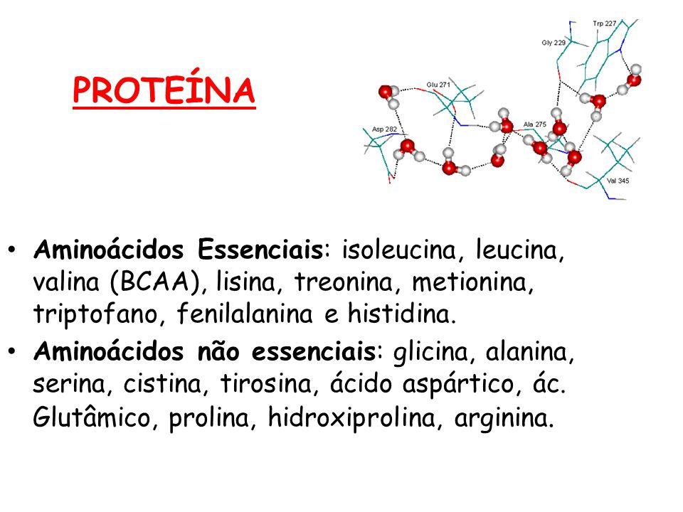 PROTEÍNA Aminoácidos Essenciais: isoleucina, leucina, valina (BCAA), lisina, treonina, metionina, triptofano, fenilalanina e histidina.