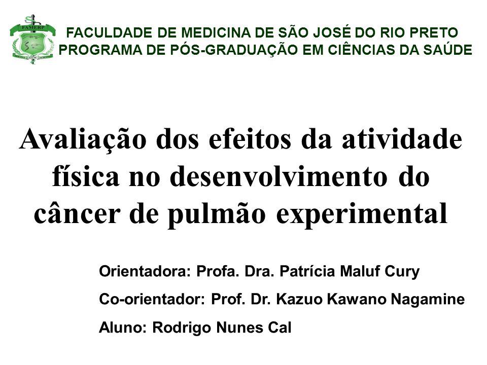 FACULDADE DE MEDICINA DE SÃO JOSÉ DO RIO PRETO PROGRAMA DE PÓS-GRADUAÇÃO EM CIÊNCIAS DA SAÚDE