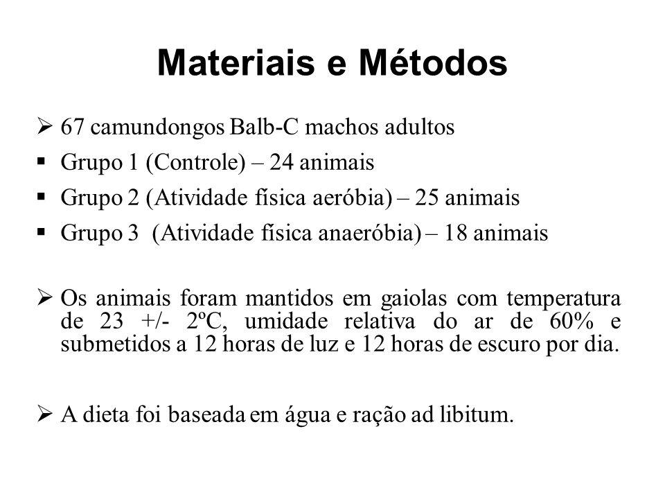 Materiais e Métodos 67 camundongos Balb-C machos adultos