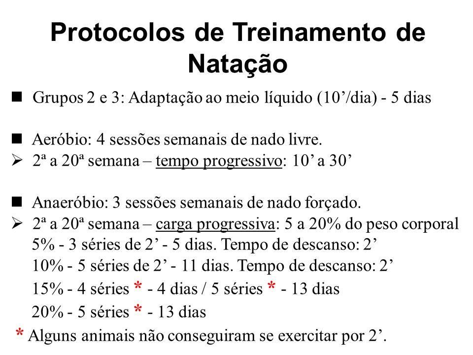 Protocolos de Treinamento de Natação