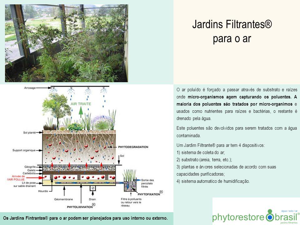 Jardins Filtrantes® para o ar
