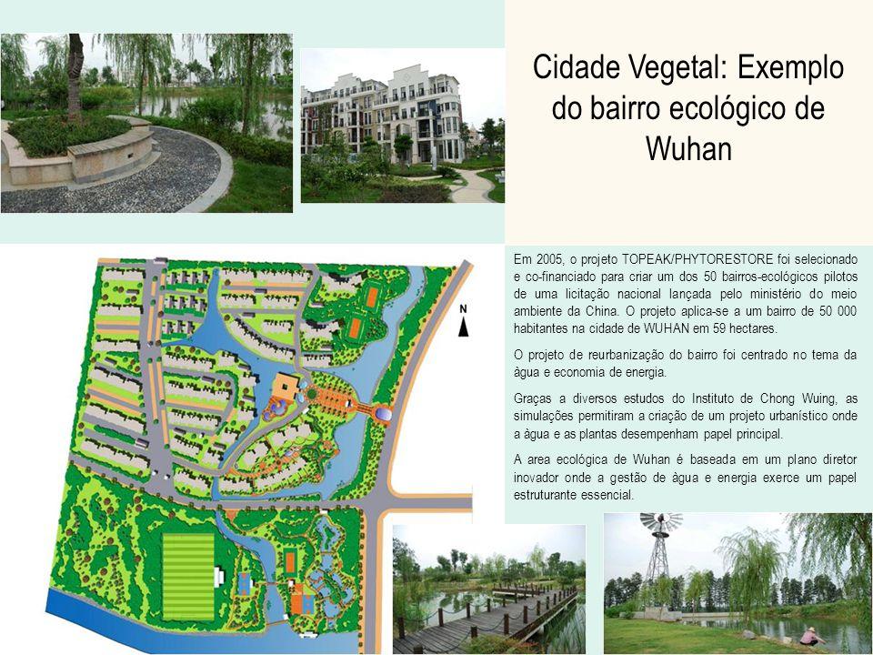 Cidade Vegetal: Exemplo do bairro ecológico de Wuhan