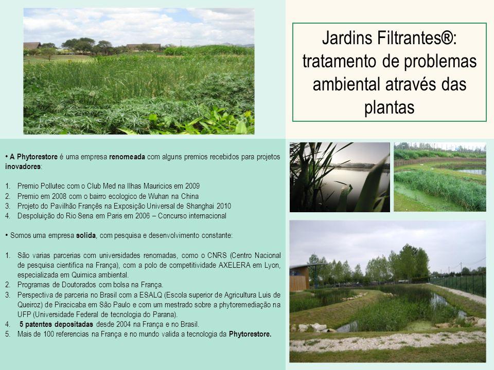 Jardins Filtrantes®: tratamento de problemas ambiental através das plantas