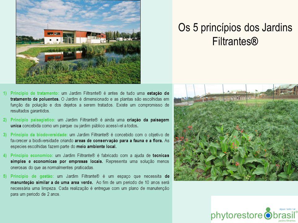 Os 5 princípios dos Jardins Filtrantes®