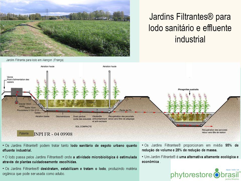 Jardins Filtrantes® para lodo sanitário e effluente industrial