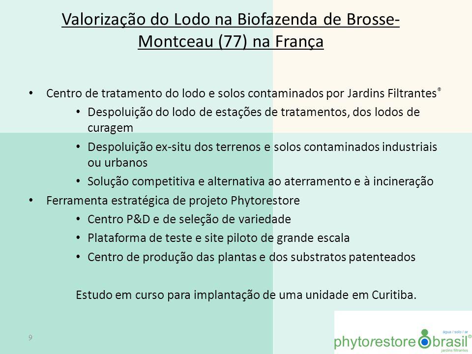 Valorização do Lodo na Biofazenda de Brosse-Montceau (77) na França