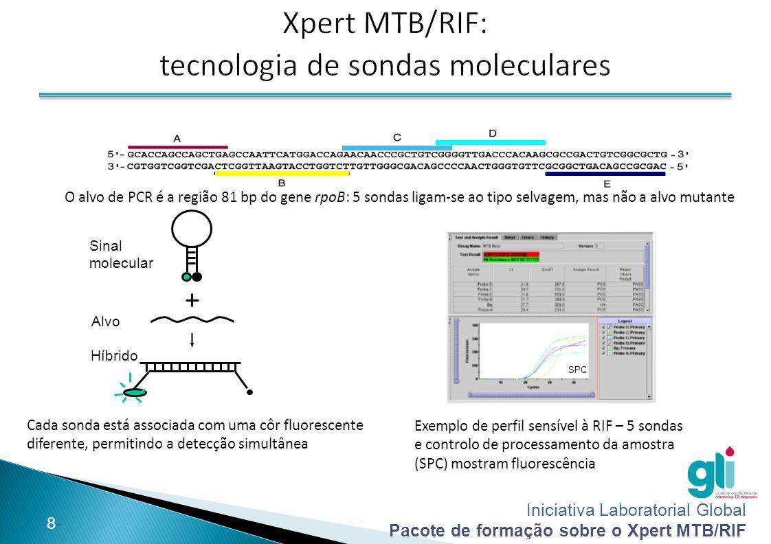 Xpert MTB/RIF: tecnologia de sondas moleculares