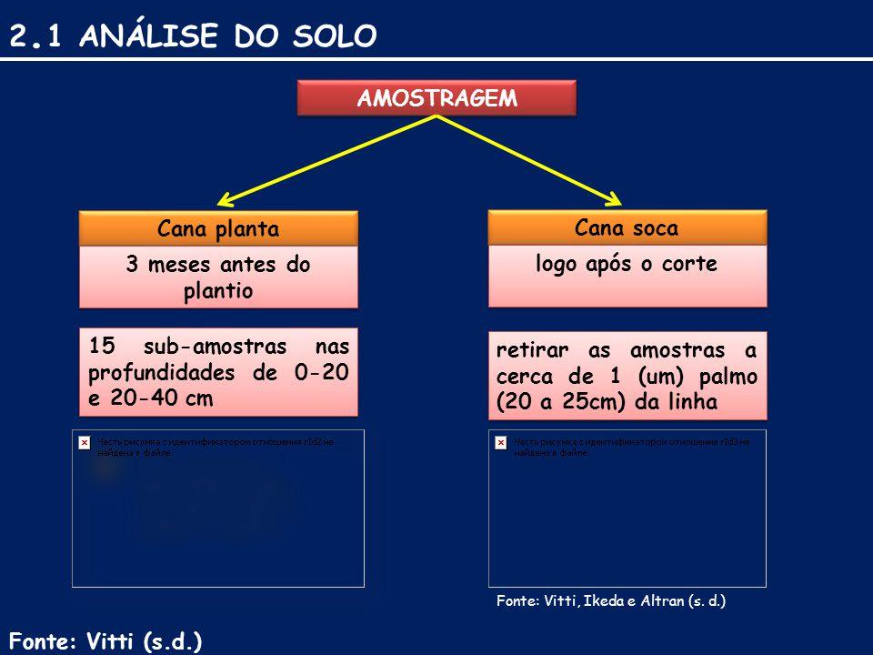 2.1 ANÁLISE DO SOLO AMOSTRAGEM Cana planta Cana soca