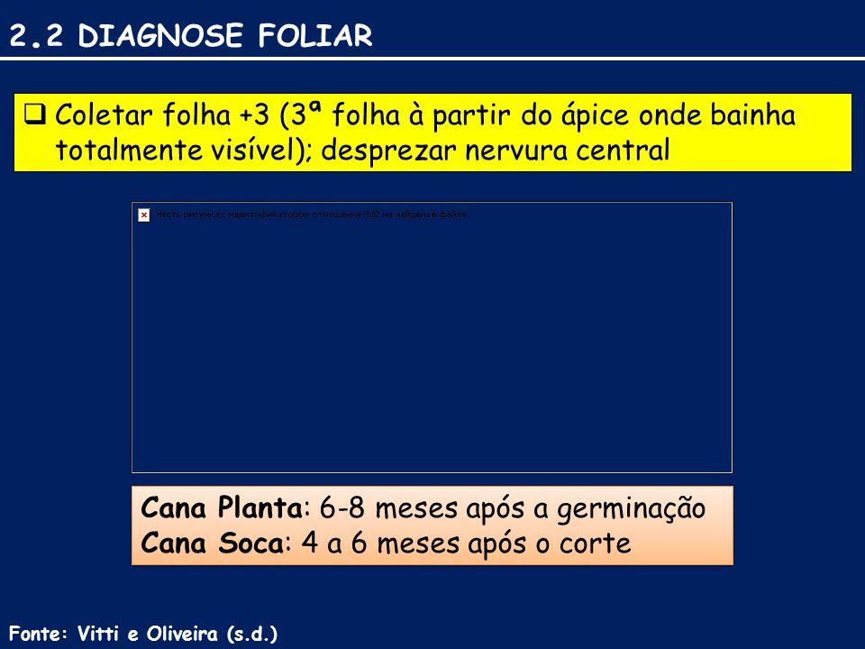 2.2 DIAGNOSE FOLIAR Coletar folha +3 (3ª folha à partir do ápice onde bainha totalmente visível); desprezar nervura central.
