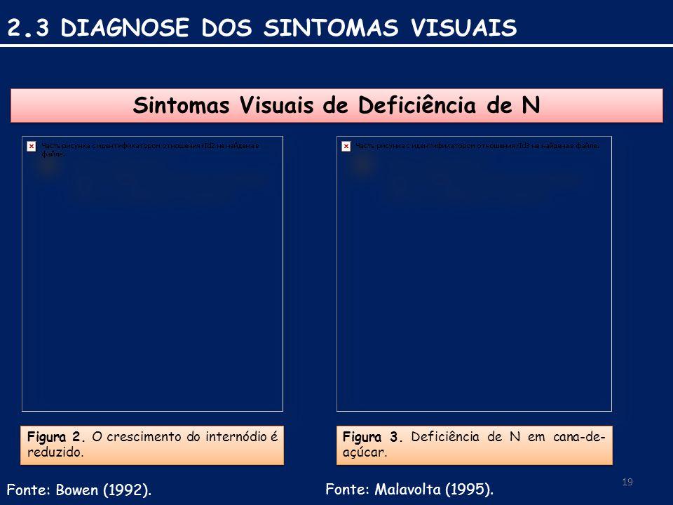 Sintomas Visuais de Deficiência de N