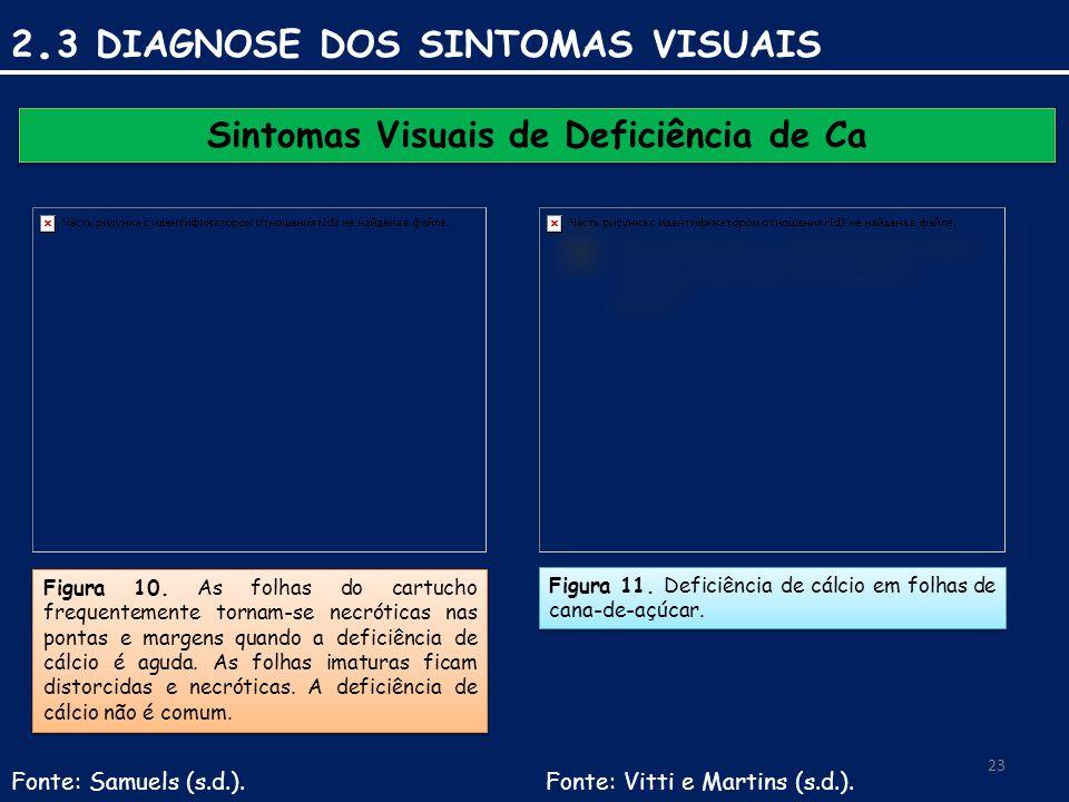 Sintomas Visuais de Deficiência de Ca