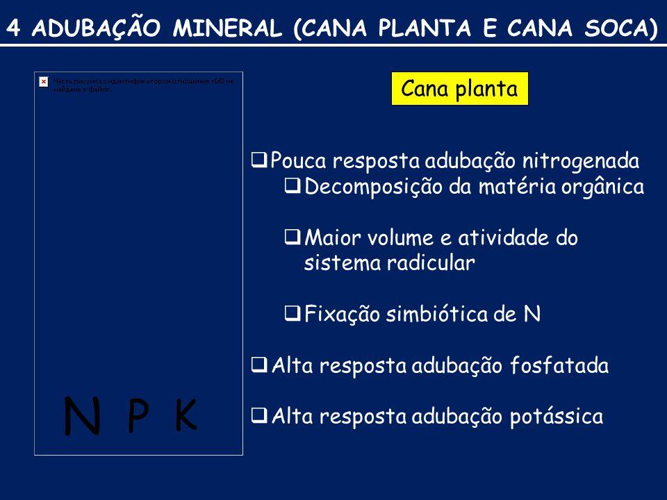 N P K 4 ADUBAÇÃO MINERAL (CANA PLANTA E CANA SOCA) Cana planta
