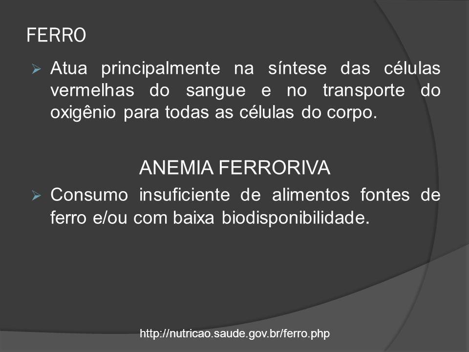 FERRO ANEMIA FERRORIVA