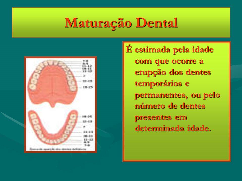 Maturação Dental