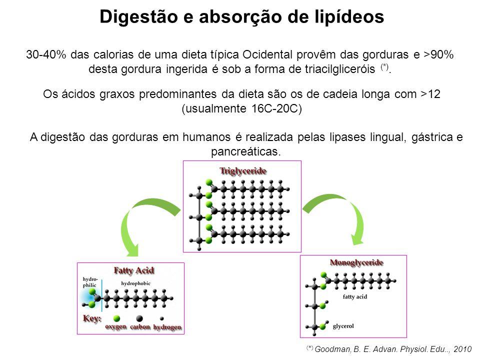 Digestão e absorção de lipídeos