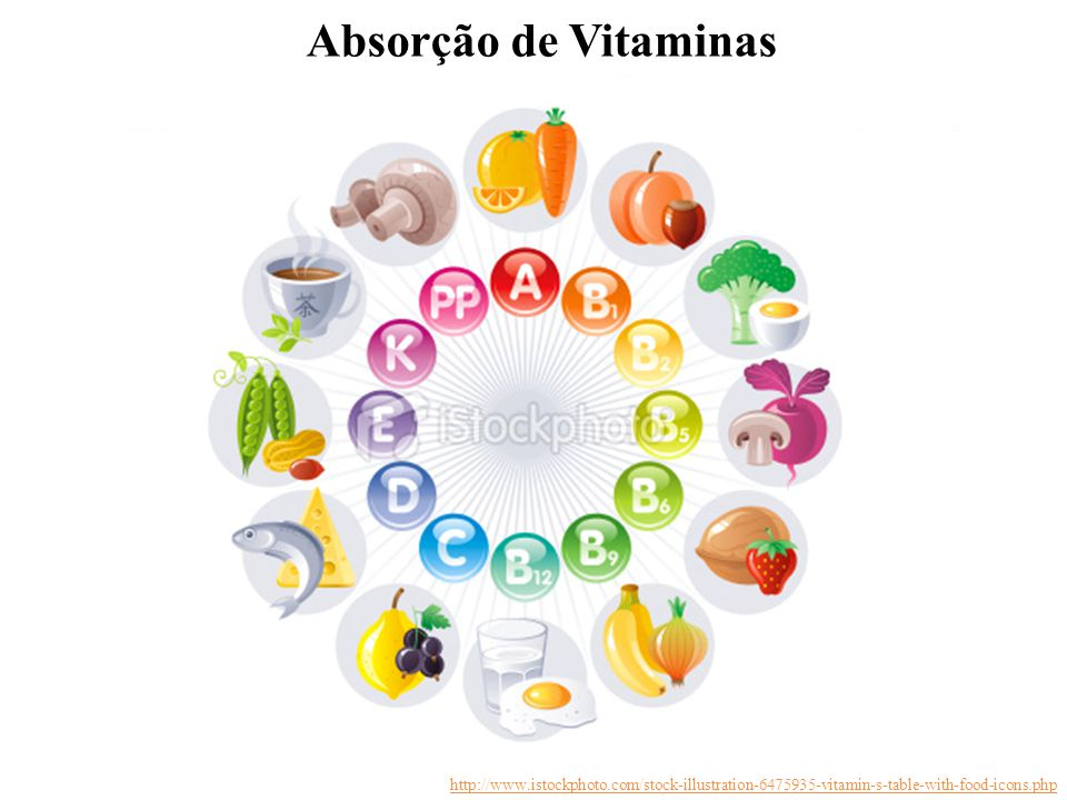 Absorção de Vitaminas http://www.istockphoto.com/stock-illustration-6475935-vitamin-s-table-with-food-icons.php.