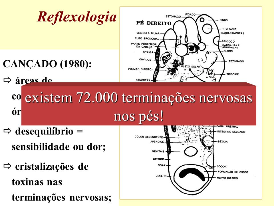 existem 72.000 terminações nervosas nos pés!