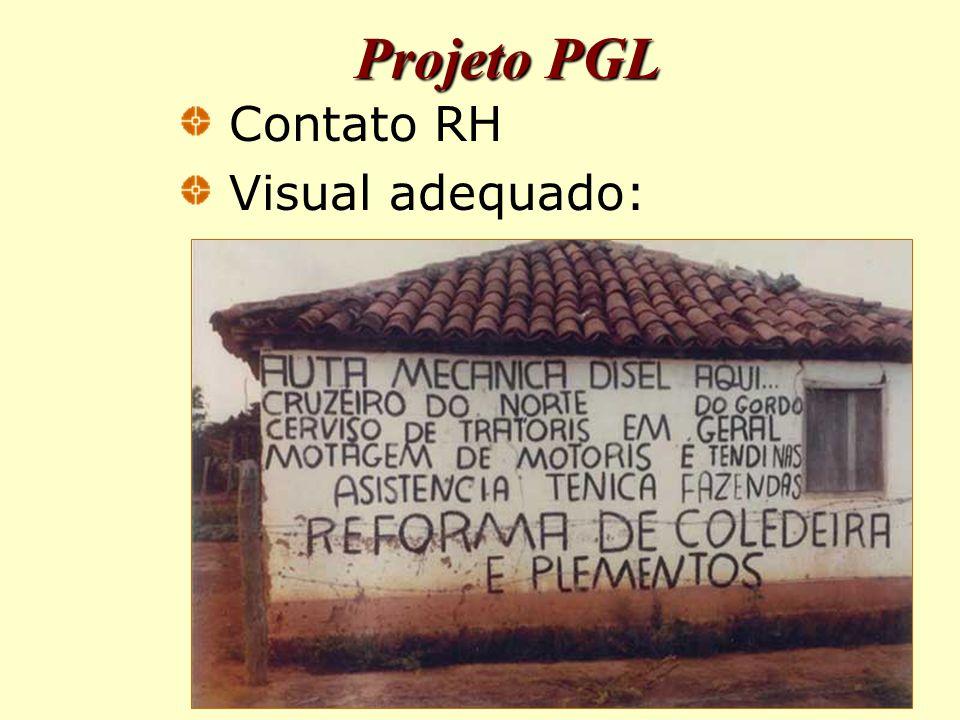 Projeto PGL Contato RH Visual adequado:
