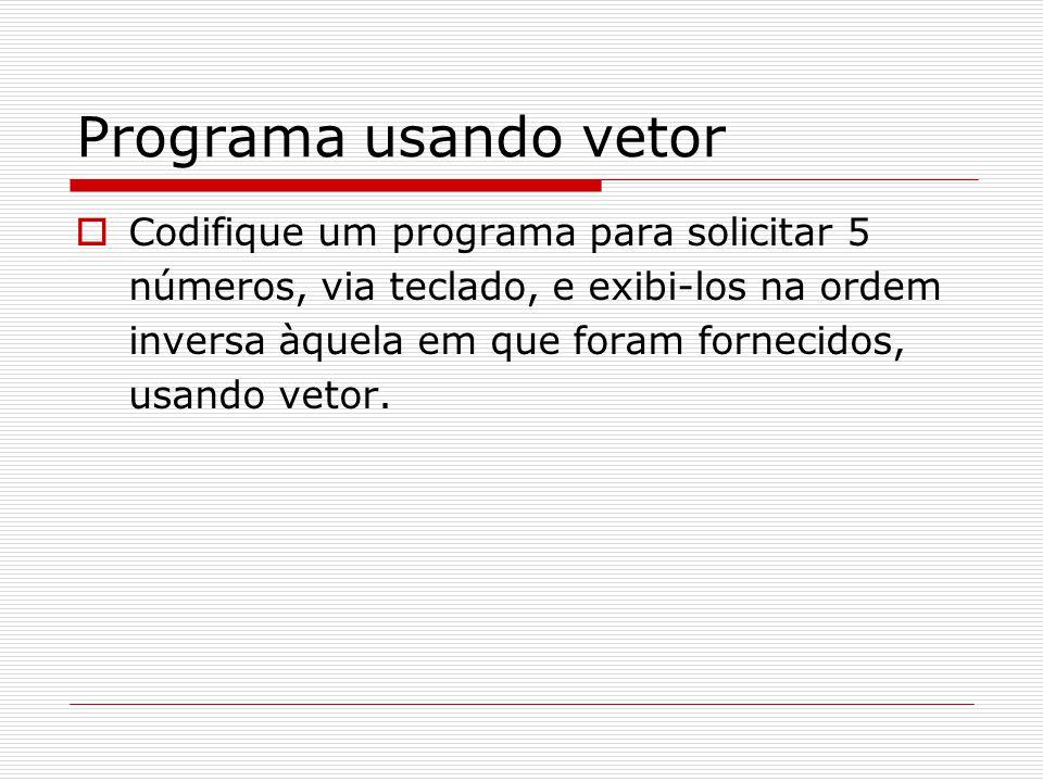 Programa usando vetor