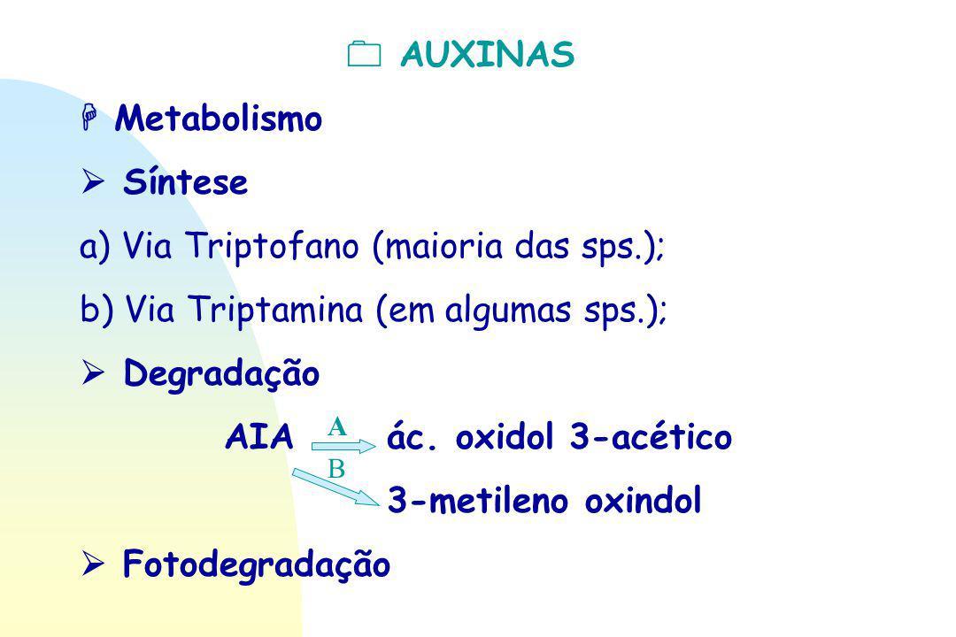  AUXINAS AIA ác. oxidol 3-acético