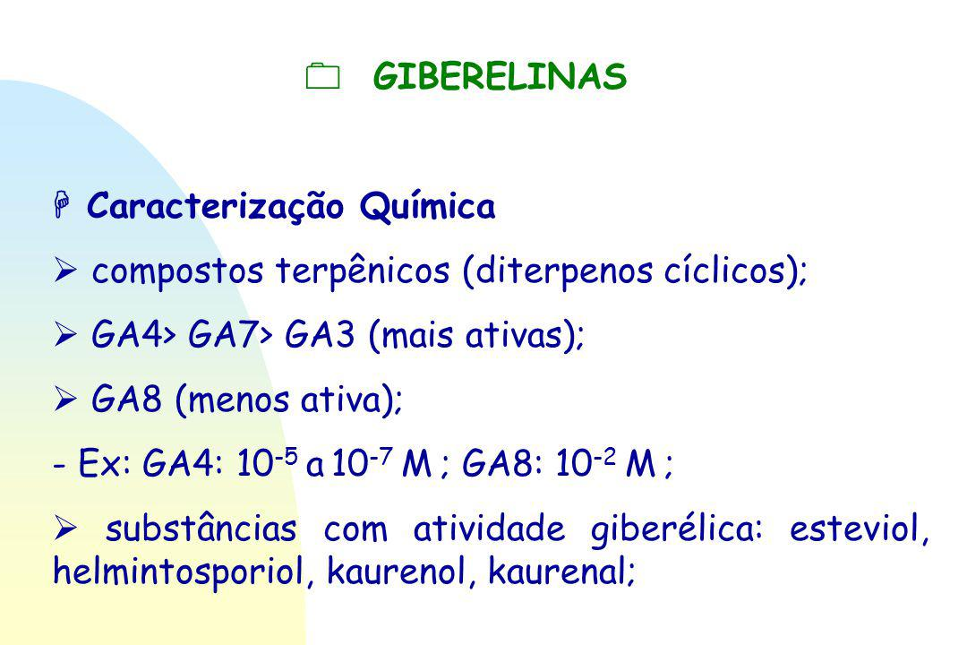  GIBERELINAS  Caracterização Química.  compostos terpênicos (diterpenos cíclicos);  GA4> GA7> GA3 (mais ativas);